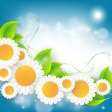 Floral abstract vector frame Royalty Free Stock Photo
