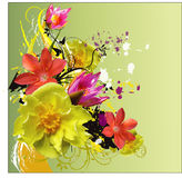 Floral  abstraction Royalty Free Stock Photo