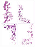Floral abstraction Royalty Free Stock Image
