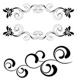 Floral abstraction. Floral ornament elements isolated on white background Royalty Free Stock Images