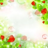 Floral air background Stock Images