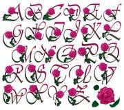 Floral ajustado da fonte Foto de Stock Royalty Free