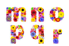 Floral Alphabet Isolated on White - Letters M, N, O, P, Q, R Royalty Free Stock Photography