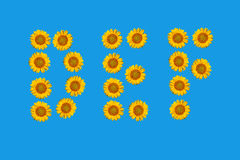 Floral alphabet made from flowers of sunflower. Stock Photography