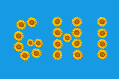 Floral alphabet made from flowers of sunflower. Royalty Free Stock Image
