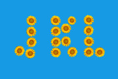Floral alphabet made from flowers of sunflower. Stock Image
