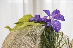 Floral anthurium ρύθμισης, μπλε clematis Στοκ Φωτογραφίες
