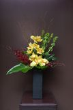 Floral arangement with Calla, cymbidium, Hydrangea, Orchids Royalty Free Stock Photos