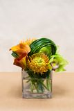 Floral arangement with Calla Lilies, cymbidium, protea and green Stock Photos