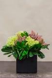 Floral arangement with cymbidium, Hydrangea and greenery Royalty Free Stock Photos
