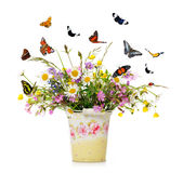 Floral arrangement Royalty Free Stock Image
