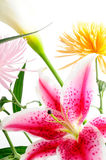 Floral arrangement. Detail of spring floral arrangement with assorted flowers isolated Stock Images