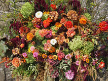 Floral arrangement, autumn colours, reds, oranges etc. Royalty Free Stock Image