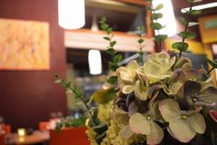 Floral arrangement. Royalty Free Stock Images