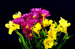 Floral arrangement Stock Images