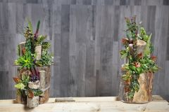 Floral arrangement of multicolored flowers, leaves and berries i. N wooden stump . artificial flowers Royalty Free Stock Photo