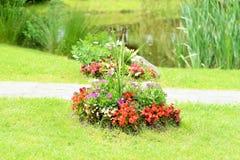 Floral arrangement in nature Stock Image