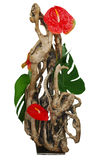 Floral Arrangement using Driftwood Stock Photos