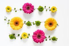 Floral Arrangement On White Background Royalty Free Stock Images