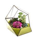 Floral arrangements Stock Images