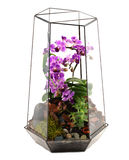 Floral arrangements Royalty Free Stock Image