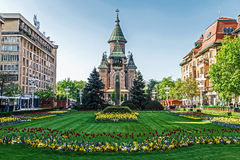 Floral arrangements in Victory Square, with orthodox cathedral i Royalty Free Stock Image