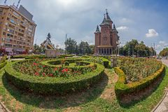 Floral arrangements in Victory Square Timisoara with Metropolita Royalty Free Stock Images