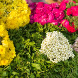 Floral arrangment for  religious offerings Royalty Free Stock Images