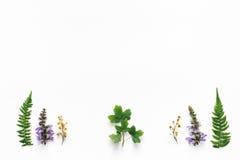 Floral Arrngement στο άσπρο υπόβαθρο Στοκ φωτογραφίες με δικαίωμα ελεύθερης χρήσης