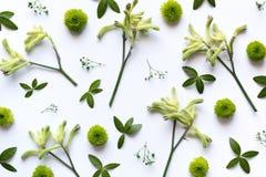 Floral Arrngement στο άσπρο υπόβαθρο Στοκ φωτογραφία με δικαίωμα ελεύθερης χρήσης