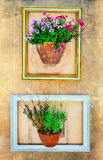 Floral art - empty frames with floral pots on the wall Royalty Free Stock Photos