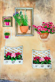 Floral art - empty frames with floral pots on the wall Stock Photos