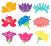 Floral artworks Royalty Free Stock Image