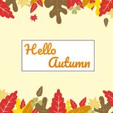 Floral autumn background with leaves. Happy autumn. Hello autumn. Floral autumn background with leaves. beautiful autumn background. background with a blend of royalty free illustration