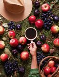 Floral autumn background. A mug of coffee in a woman`s hand on the grass with autumn harvest: grapes, plums and apples. Floral fruit autumn background. A mug of Royalty Free Stock Photos