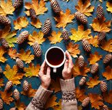 Floral autumn background. A mug of coffee in a woman`s hand on the green background with yellow maple leaves and cones Stock Photography