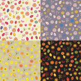 Floral autumn seamless patterns Stock Photos