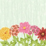 Floral bacground with hand drawn flowers Stock Photo