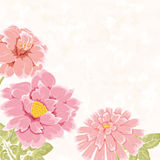 Floral bacground with pink hand drawn flowers Royalty Free Stock Images