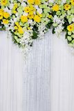 Floral backdrop Royalty Free Stock Image