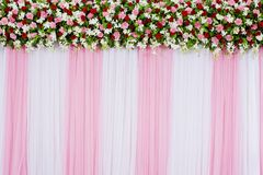 Floral backdrop. Closeup beautiful floral backdrop decorations design background Stock Photos