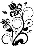 Floral backgroun. Vectror illustration of a black floral background Stock Photo