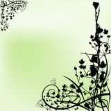Floral background 02. High detailed background illustration & plants silhouettes Stock Images