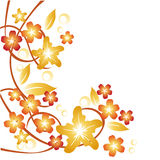 Floral background 1 Stock Photos
