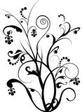 Floral background. Black floral in white background Stock Image