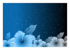 Floral background. Floral design Royalty Free Stock Photography