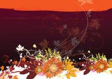 Floral background. Floral design Stock Photos