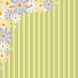 Floral background. A floral background with many coloured daisy. EPS file available Royalty Free Stock Photo
