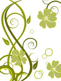 Floral background. Vector illustration of green flowers and floral elements Royalty Free Stock Images