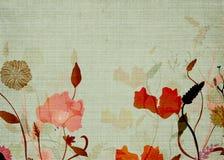 Floral background. Illustration of flowers on vintage paper Stock Image
